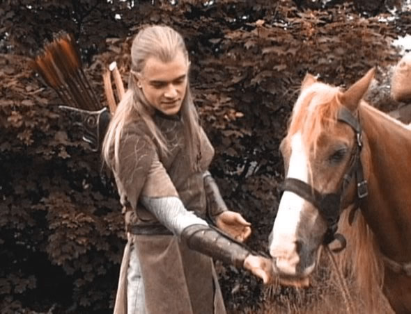 Horses in the Lord of the Rings (5/6)