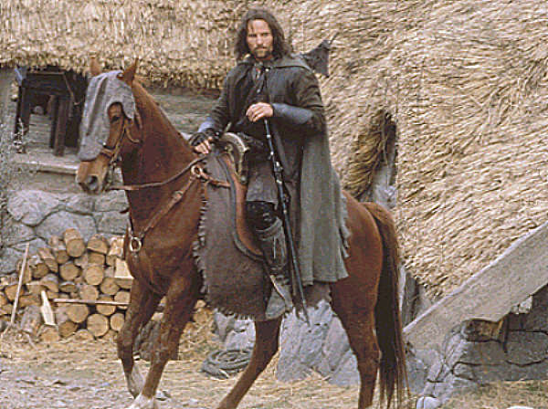 Two Horses In Lord Of The Rings