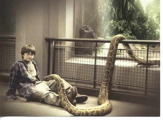 Harry Potter and the Snake at the Zoo