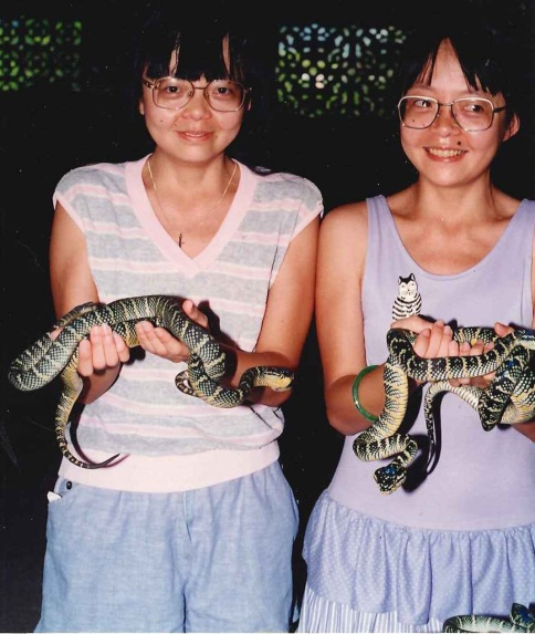 Twins holding Vipers