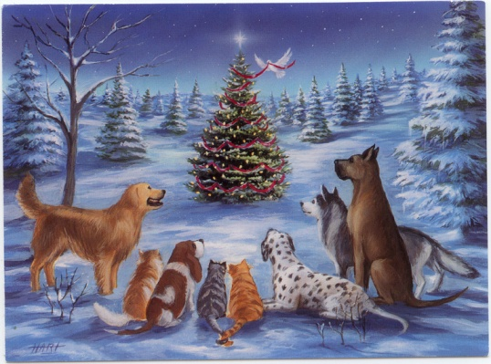 animas-with-bird-decorating-christmas-tree-greeting-card