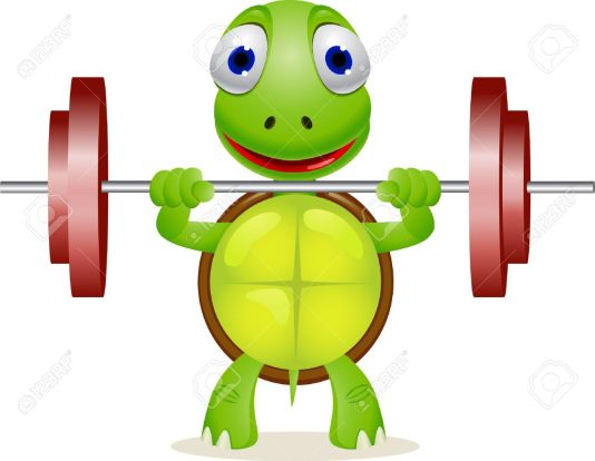 TurtleLiftingWeights