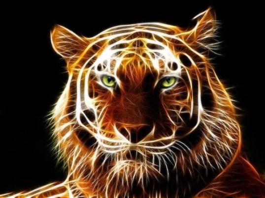 tiger avatar